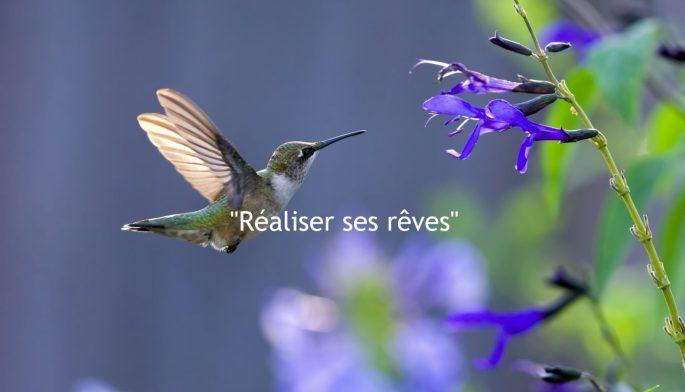 cropped-realisersesreves2.jpg